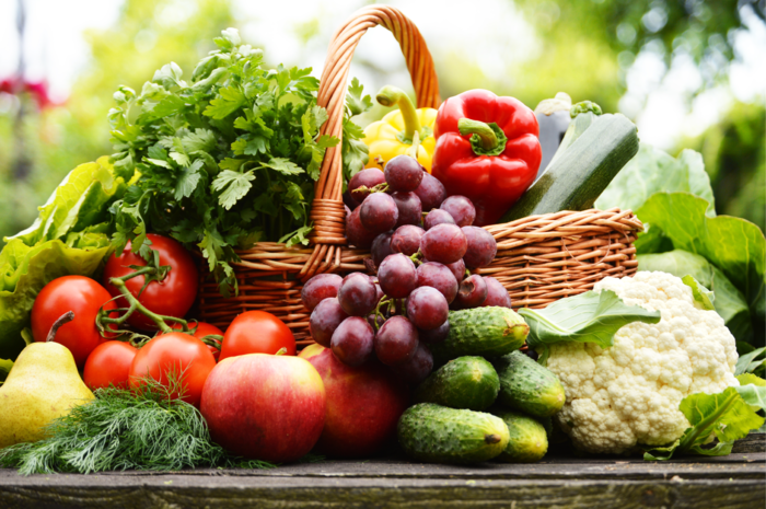 A Plant-Based Lifestyle for Beginners